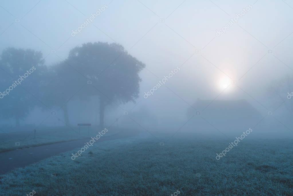 Misty dutch rural landscape