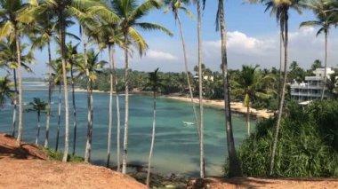 Luxury Beach Lagoon / Beautiful ocean view and amazing beach lagoon with palm trees