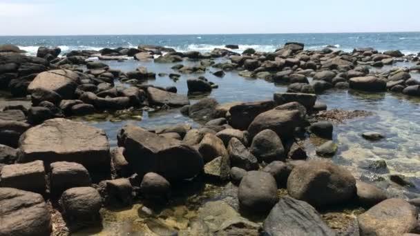 Ocean Waves exotický ostrov Srí Lanka / úžasný výhled na oceán, kameny, palmy a modré nebe