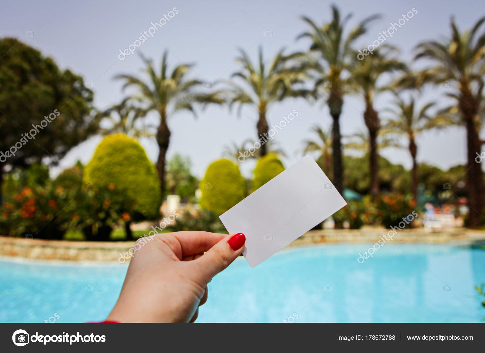 Hand Holds Business Card Background Pool Palms Sky — Stock ...