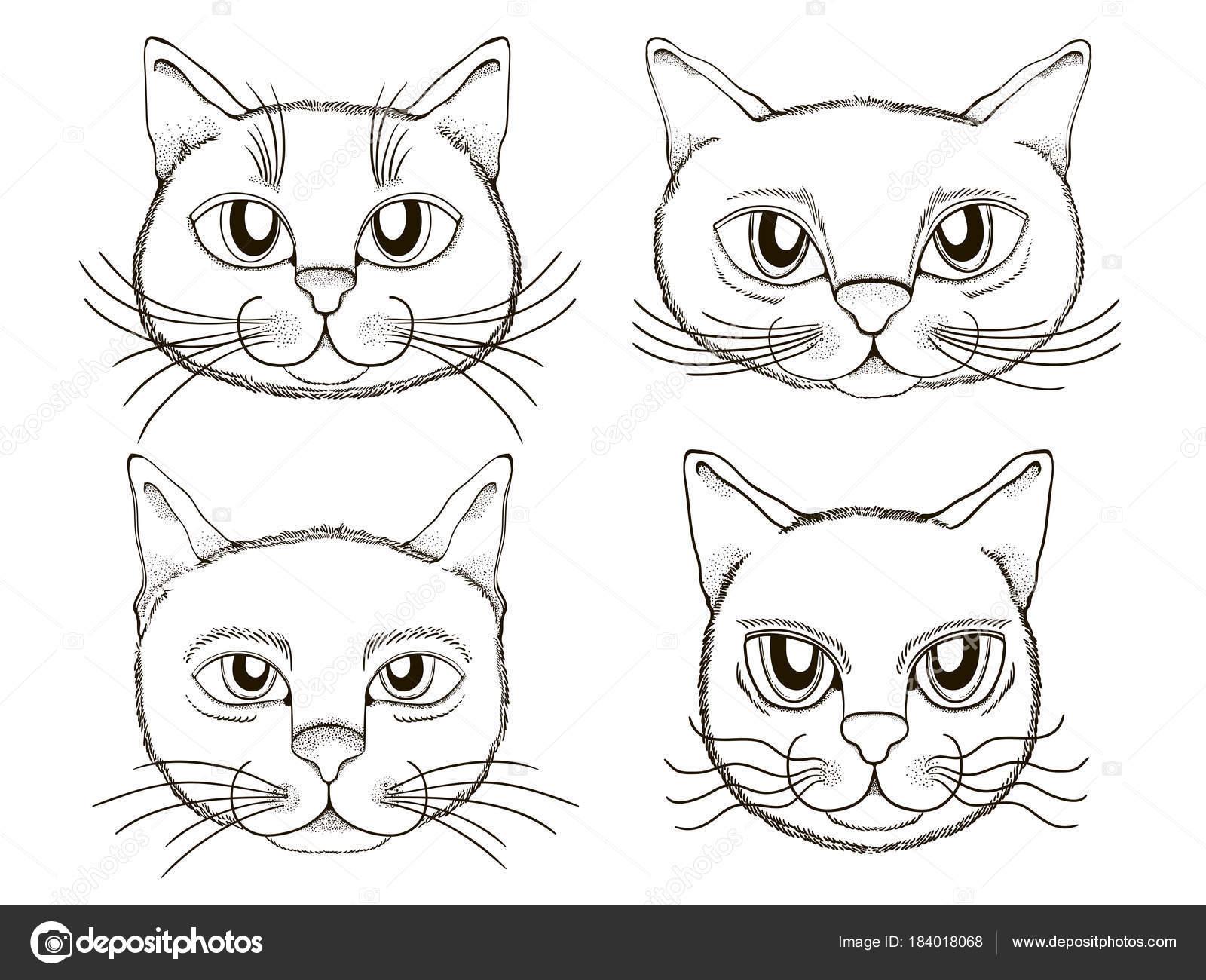 Kediler Kafa Ifadeleri Vektör Kümesi Boyama Kitap öğesini Stok