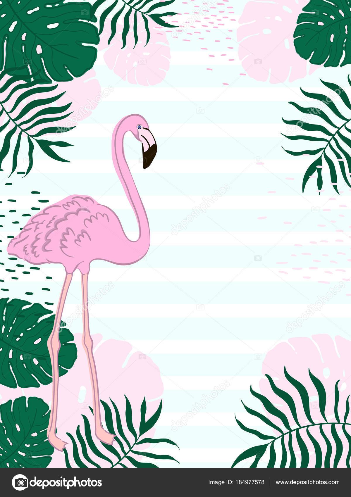 Retangular Folhas Tropicais Moldura E Flamingo Verão Banner Fundo