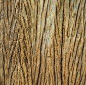 marrone in legno come sfondo