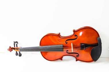 vintage violin on white background.
