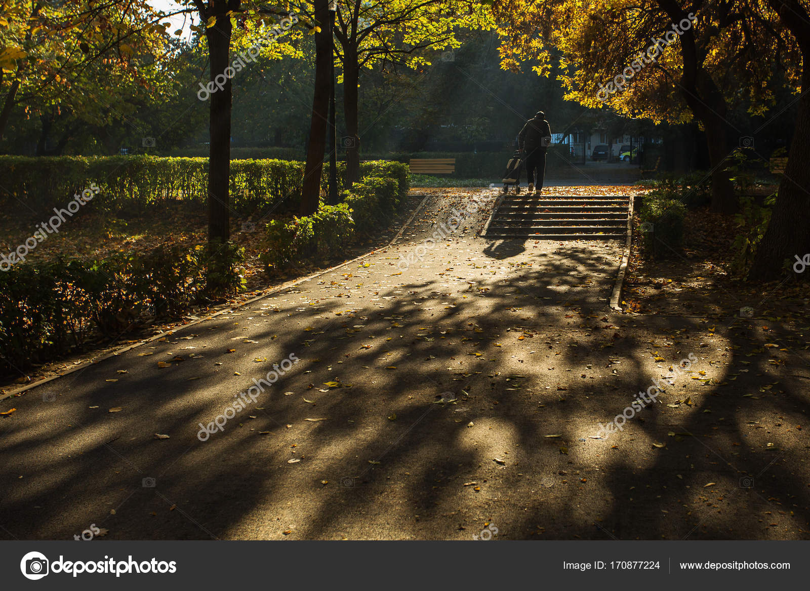 Old Man Carrying His Bag In A Park In Autumn Season With Colourf Stock Photo C Danmir12 170877224