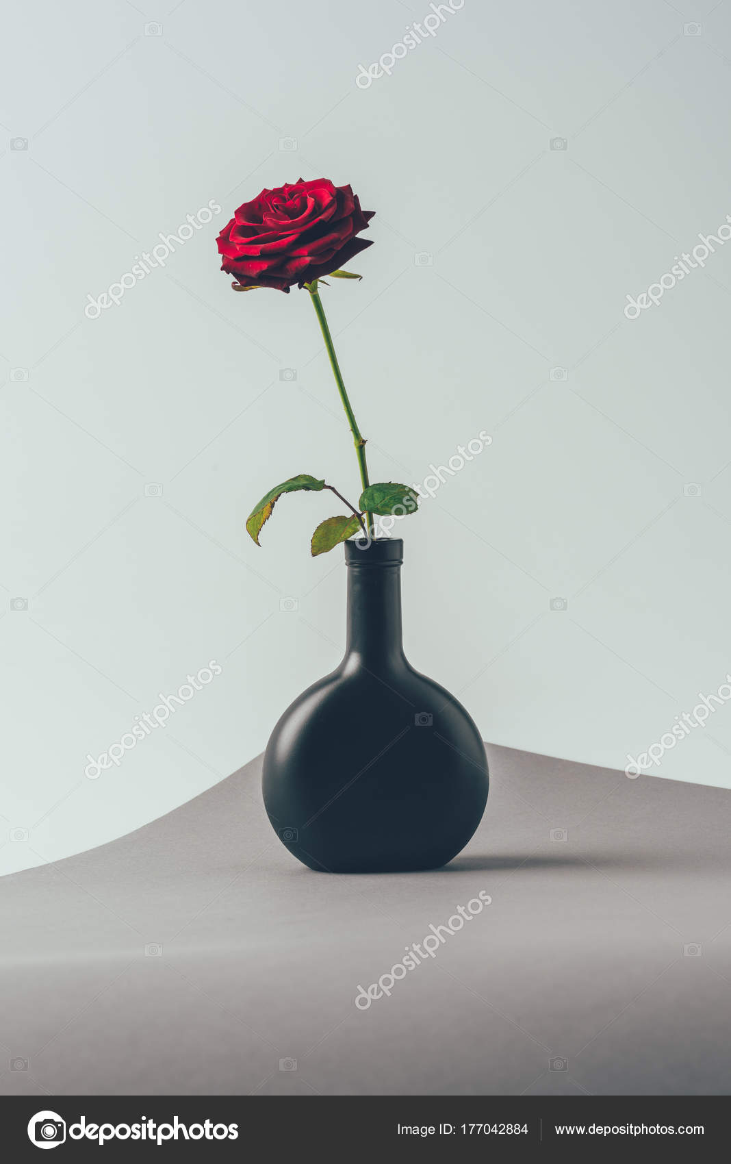 Red Rose Black Vase Gray Surface Valentines Day Concept Stockfoto