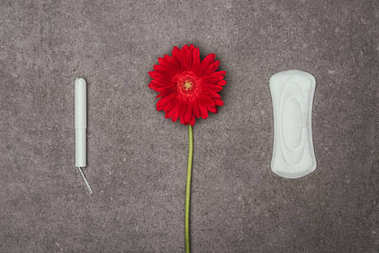 top view of arrangement of red flower, menstrual pad and tampon on grey surface