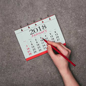 Photo cropped shot of woman pointing at date in calendar on grey surface