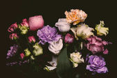 close-up view of beautiful various blooming flowers isolated on black