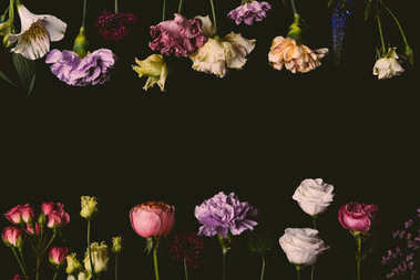 collection of beautiful tender fresh blooming flowers isolated on black