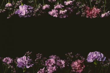 beautiful floral frame made of fresh pink and purple flowers isolated on black