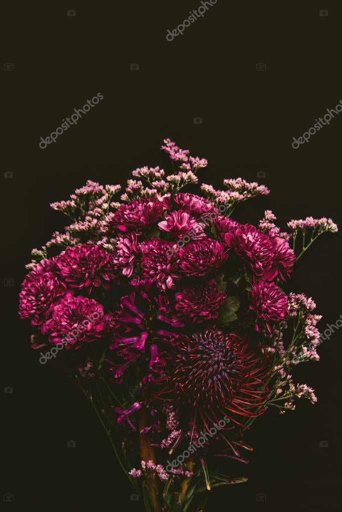 beautiful floral bouquet of maroon blooming flowers isolated on black