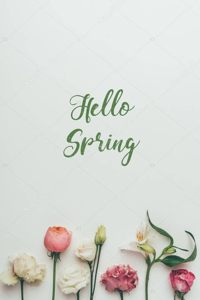 beautiful tender blooming flowers and inscription hello spring on grey