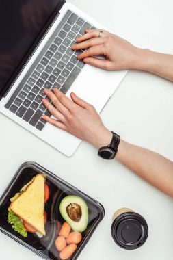 Cropped image of woman using laptop at table with food in lunch box isolated on white stock vector