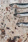 Részleges kilátás sor-három kis halak rusztikus felület