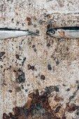 Részleges kilátás a két kis halak rusztikus felület