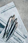 Fotografie Pohled shora čtyř ryb na staré noviny