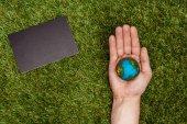 Fotografie ořízne obraz člověka drží země model na straně tabule na zelené trávě, koncept den země