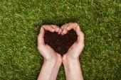 Fényképek körülvágott kép nő gazdaság szív alakú talaj felett zöld fű, föld napja koncepció