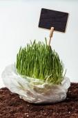 Sazenice se tabule v plastovém sáčku na půdě izolované na bílém, koncept den země
