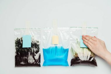 cropped image of woman sticking paper sheets on plastic bags with soil, water and seedling isolated on white, earth day concept