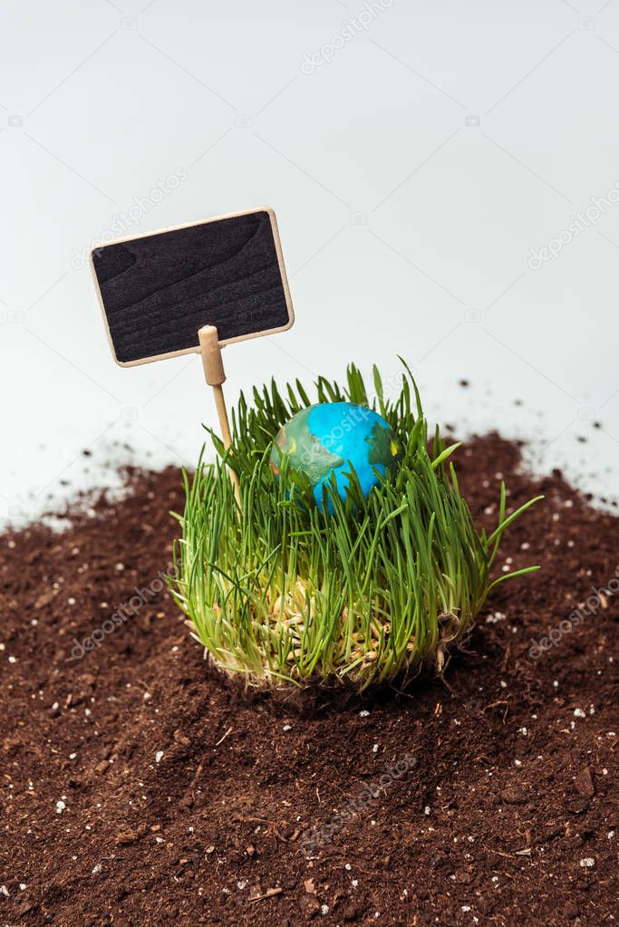 seedling with earth model and blackboard on soil isolated on white, earth day concept