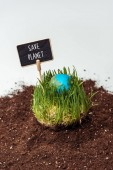 Photo seedling with earth model and sign save planet on soil isolated on white, earth day concept