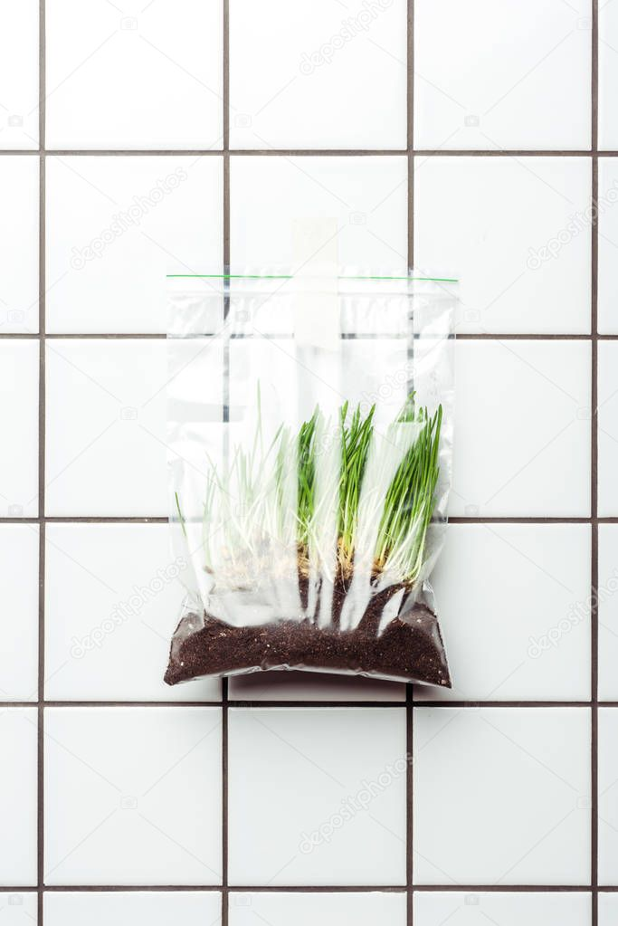 ziplock plastic bag with seedling and soil hanging on tile wall, earth day concept