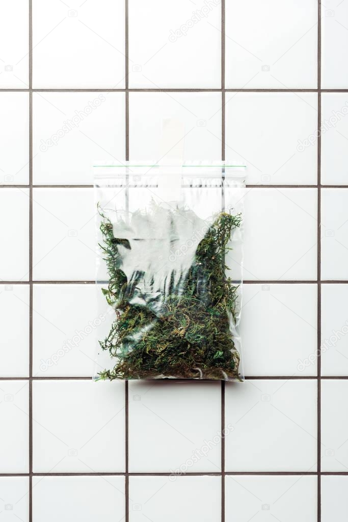 ziplock plastic bag with dried plants hanging on tile wall, earth day concept
