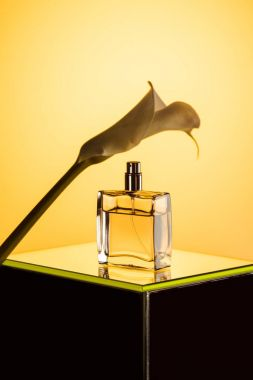 spray bottle of perfume and calla flower, on yellow