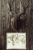 Fotografie Detailní zobrazení mapy a dekorativní dřevěná Jelení hlavy na tmavý dřevěný povrch