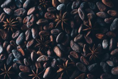 full frame view of delicious cocoa beans and star anise background