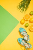 Fotografie elevated view of palm leaf, stylish female blue platform sandals, lemons, limes and slices of orange