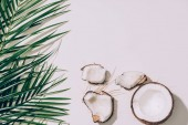 pieces of organic healthy coconut and green palm leaves on white