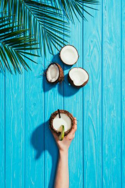 top view of human hand with coconut cocktail, cracked coconuts and palm leaves on turquoise wooden surface