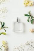 vista superiore della bottiglia di profumo circondato con fiori e rami verdi su bianco