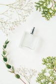 Fotografie top view of bottle of perfume with green branches and flowers on white