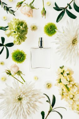 top view of glass bottle of perfume surrounded with flowers and green branches isolated on white