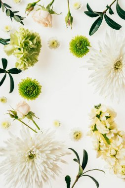 top view of various green and white flowers on white