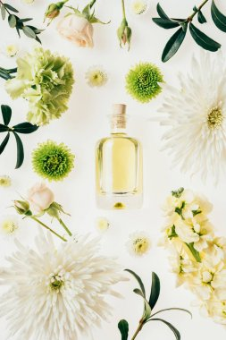 top view of bottle of aromatic perfume surrounded with flowers and green branches isolated on white