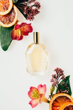 top view of glass bottle of aromatic perfume with various flowers and grapefruit slices isolated on white