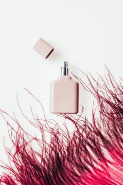 top view of bottle of perfume with red feather on white