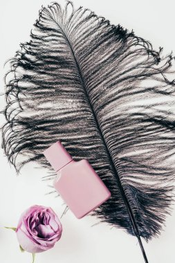 top view of bottle of perfume with black feather and pink rose on white