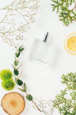 top view of bottle of fresh perfume with floral composition around on white