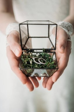 cropped shot of bride in white dress with wedding rings in box in hands
