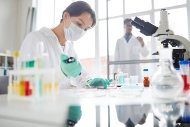 Side view portrait of young woman working in laboratory preparing test samples for medical research, copy space