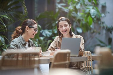 Portrait of two young women laughing happily while using laptop on outdoor cafe terrace decorated with plants, copy space