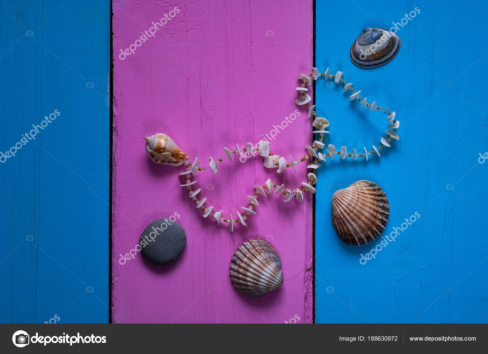 3e27824dcac6 Seashells on a colored background, frames and a glamorous background of two  colors for space