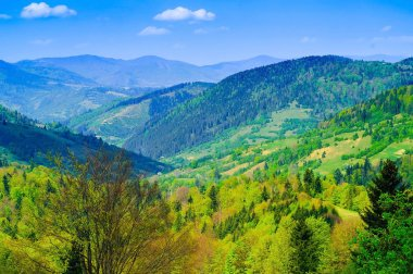 high mountains of the tatra, background of blue sky and trees, concept of wildlife, copy space