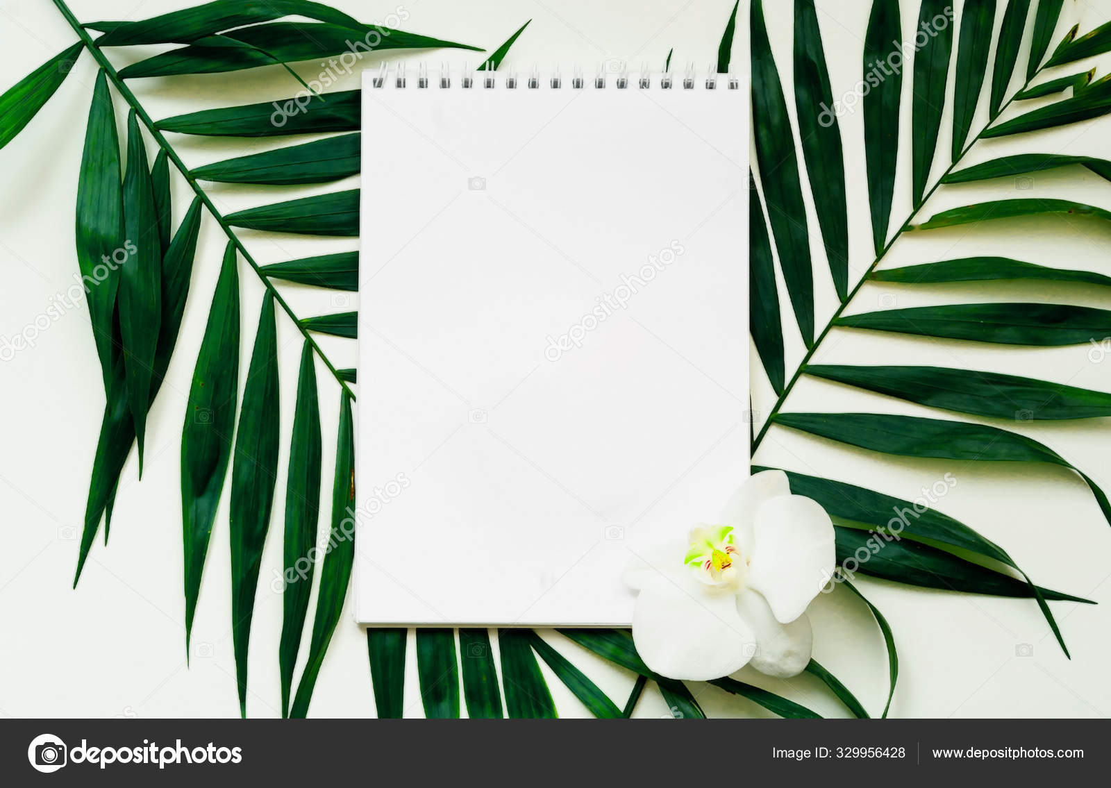 Tropical Background Notebook On A White Background With Palm Leaves Close Up Stock Photo C Ton Company Ukr Net 329956428 2020 popular 1 trends in home & garden, home improvement with tropical leaf painting home and 1. https depositphotos com 329956428 stock photo tropical background notebook on a html
